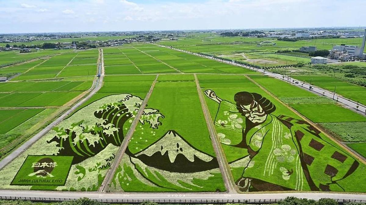 Tokyo Olympics 2020 ภาพศิลปะ ศิลปะบนทุ่งนา โอลิมปิกเกมส์ 2020