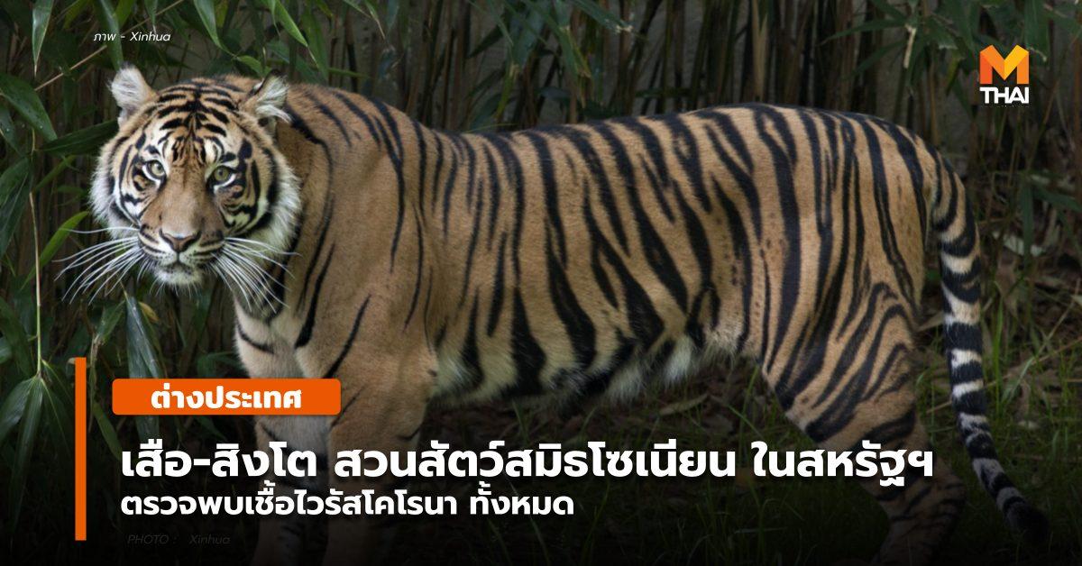 ข่าวต่างประเทศ สวนสัตว์ สวนสัตว์แห่งชาติสมิธโซเนียน สหรัฐอเมริกา